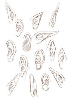 여러가지 귀