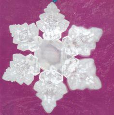 Water crystals - Wedding March