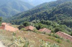 Invernales en aliva asturias
