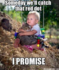 MemeMaker.net - Someday we'll catch that red dot I PROMISE