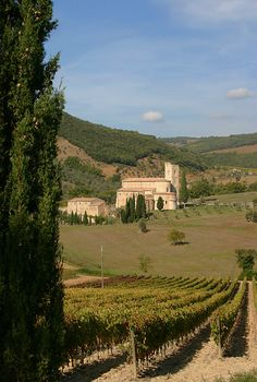 Una fetta di Toscana - Sant Antimo, Siena Italy