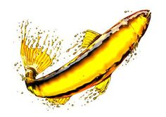 Should You Really Be Taking Fish Oil? - Chris Kresser