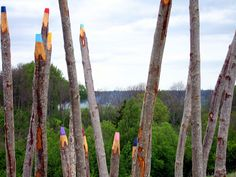 Coloured Pencils in the Forest. Site specific installation by Jonna Pohjalainen.
