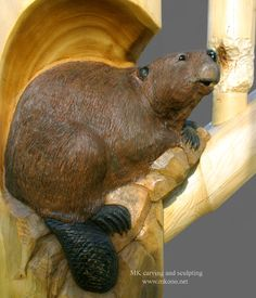 "Beaver ""Oops..."" - wood carving by MK Carving and Sculpting;  It looks as though this beaver began working on one of the railing pickets;  Western red cedar;  11"" x 16"" x 7"""