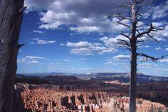 Bryce Canyon is net een sprookje! Uren heb ik hier gezeten en genietend van het uitzicht en nadekend over het leven. Wat is de aarde toch mooi!  Rotsen tot in de oneidigheid en wolken voorbij schrijdend. Deze foto is niet bewerkt, maar het echte decor! Meer weten over deze bestemming? http://to.kras.nl/pinterest_verenigde-staten