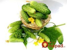 Po tomto životabudiči rastú uhorky ako divé: A nestojí to ani cent! Avocado Toast, Baked Potato, Pickles, Green Beans, Cucumber, Vegetables, Cooking, Breakfast, Health