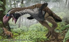 Prehistoric Birds | The giant bird Gastornis hunting a Leptictidium in dense forest