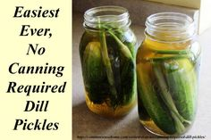 Easiest Ever, No Canning Required Dill Pickles