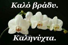 Good Night, Stud Earrings, Floral, Flowers, Nighty Night, Stud Earring, Royal Icing Flowers, Good Night Wishes, Flower