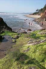 Oregon Coast Camping Guide - The Complete List