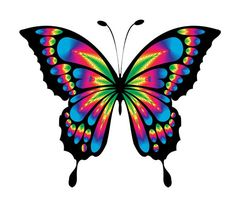 free pictures of butterflies clipart best butterflies rh pinterest com real butterflies clipart clipart of butterflies and flowers