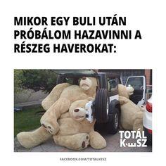 Geek Humor, Funny Pictures, Teddy Bear, Lol, Celebrities, Animals, Jokes, Humor, Fanny Pics