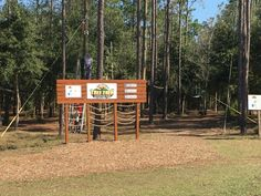 Outpost Orlando's experience at Orlando Tree Trek is one to remember. Check out their journey through the trees here! #OutpostOrlando #Orlando #Kissimmee #OrlandoTreeTrek #LoveFL #FLAdventures
