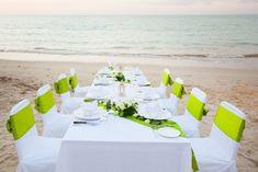 Green Wedding Decorations, Green Tablecloth, Green Craft, Chair Sashes, Feather Crafts, Leaf Garland, Green Satin, Wedding Supplies, Event Design