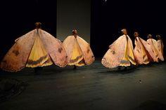 Moth-costumes, Lili Fischer