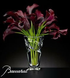 Midnight's Calling Luxury Calla Lily Bouquet in Baccarat® Crystal Vase - 20 Stems