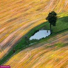 Free pc backgrounds 2015 landscape firms http://www.yoummisr.com/free-pc-backgrounds-2015-landscape-firms/: