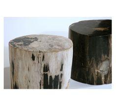 Petrified Wood Side Table   Organic Modernism