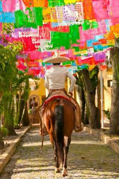Mexico, beautiful paper flags!