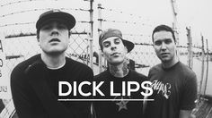 blink-182 - Dick Lips (cover)