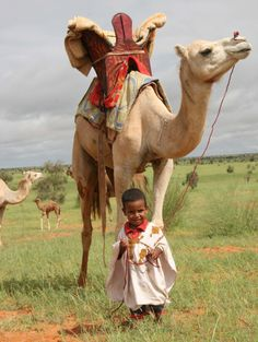 a small child leading a camel...thats confidence in your mission.