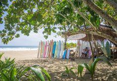 ✓ Kennst du schon das karibische Dörfchen Puerto Viejo in Costa Rica? Was du dort auf gar keinen Fall verpassen solltest verrate ich dir hier! ✓
