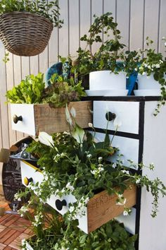Spring Gardening Hacks #9: compact planter box display using an old chest of drawers. #airtasker #garden #gardening #gardenhacks #DIY #compactgarden #reclaimed