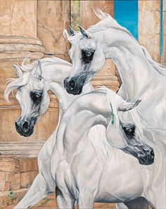 :: Judith Wagner Artist :: Photography ::