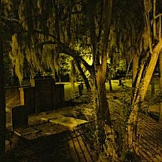 Savannah…a City Built on It's Dead.