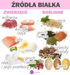 Dog Food Recipes, Diet