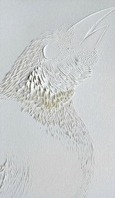 Paradise Bird by Domitilla Biondi