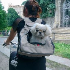 XPack Pet Carrier - $110    Chester needs one of these!