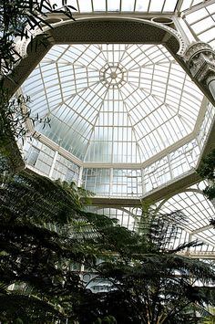 Conservatory Wilhelma, Stuttgart, Germany. Photo by Michael Kurz.