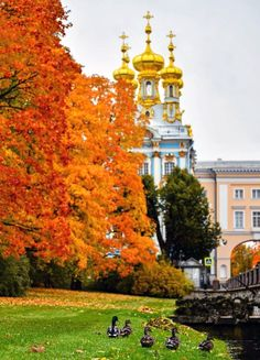 Autumn Scenes, Ua, Places To Visit, Seasons, Landscape, Castles, Towers, Fitness Abs, Scenery