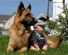 29 Animals Who Bonded With Their Baby Humans