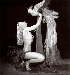 Lili St Cyr  Queen of 1950s Burlesque