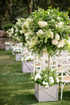 Trees in boxes for wedding ceremony aisle - Kevin Chin Photography