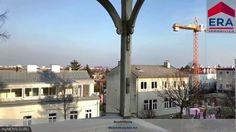 VERMIETET: Herrliche Altbau-Wohnung (3 Zimmer) mit Terrasse und Gartenan... Cn Tower, Building, Travel, Patio, Real Estates, Lawn And Garden, Viajes, Buildings, Destinations