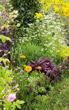 garden drawing The St Johns Hospice Garden by Jekka McVicar - Chelsea Flower Show 2016 Garden Tool Set, Veg Garden, Easy Garden, Edible Garden, Vegetable Gardening, Container Gardening, Chelsea Flower Show, Small Gardens, Outdoor Gardens