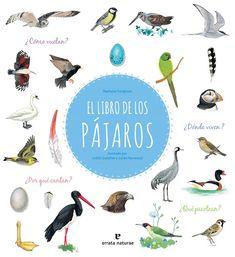 ¿Qué sabes de pájaros? Ornitología desde casa ~ In Natura In Natura, Movie Posters, Envole, Voici, Parents, Products, World, Home, Children's Books