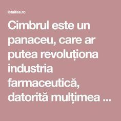 Cimbrul este un panaceu, care ar putea revoluționa industria farmaceutică, datorită mulțimea proprietăților terapeutice: antibiotice, antiinflamatoare, antihistaminice, anti-ulcerogene, antibacteriene sau anticancerigene. Herbal Remedies, Good To Know, Herbalism, Healthy, Pandora, Food, Tips, Medicine, Therapy