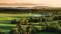 Kamouraska,Québec. Province Du Canada, Bas Saint Laurent, Grands Lacs, Vineyard, Golf Courses, Images, Dit, Outdoor, Nature