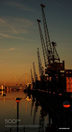 cranes at dusk by taragordon. @go4fotos
