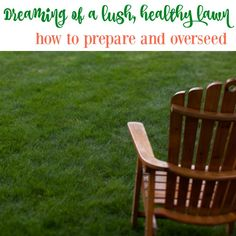 When you are trying to improve the quality of your lawn, sometimes you need to prepare and overseed your lawn in order to improve it at the root level.