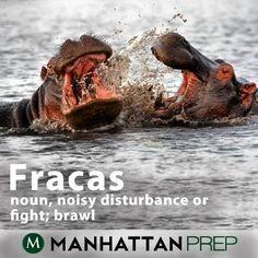 Fracas: noisy disturbance or fight; brawl