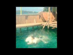 Aqua Lounge in Bocas del Toro Panama