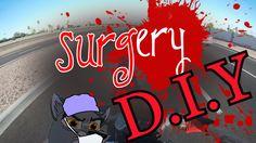 D.I.Y. surgery - Bringing Scarlet home