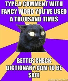 haha i feel this way sometimes - Cashier Humor - Cashier Humor meme - - Anxiety Cat. haha i feel this way sometimes The post Anxiety Cat. haha i feel this way sometimes appeared first on Gag Dad. Anxiety Cat Meme, Anxiety Humor, Anxiety Girl, Anxiety Disorder, Panic Disorder, Anxiety Quotes, Anxiety Thoughts, Feelings, Anxiety Cat