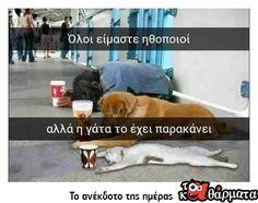 'Ολοι ειμαστε... Best Funny Pictures, Funny Photos, Truth Quotes, Greek Quotes, Stupid Funny Memes, Just For Laughs, Picture Video, Funny Animals, Haha