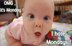 Image detail for -hate Mondays ! | LOL pics & funny memes